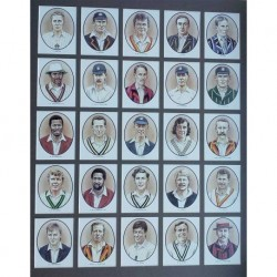 Hampshires International Players Framed Cards