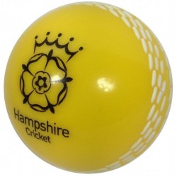 Hampshire Yellow Windball Junior